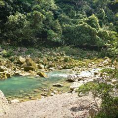 Landing Mountain Forest Park User Photo