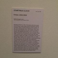 Henry Art Gallery User Photo