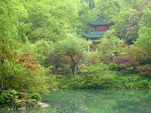 Mt. Yuelu Forest Park User Photo