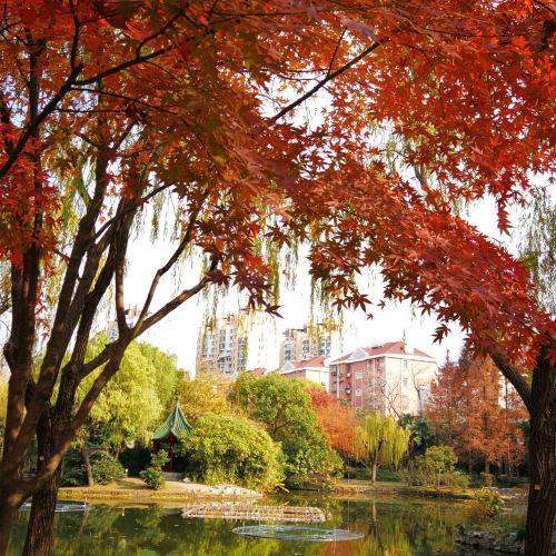 Feifengshan Park