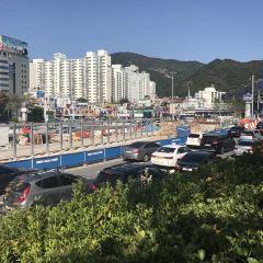 Busan Metro User Photo