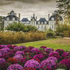 雪瓦尼城堡用戶圖片