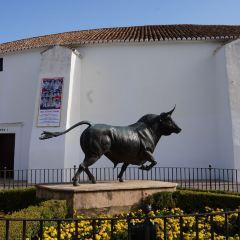 Plaza del Toros User Photo