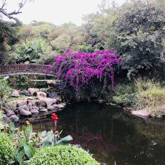 정인곡 여행 사진
