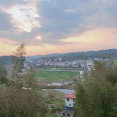 福壽山森林公園用戶圖片