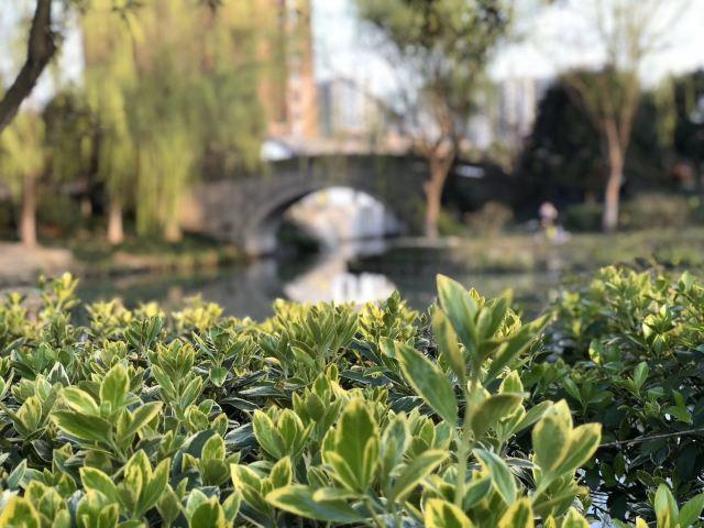 皋亭山景區