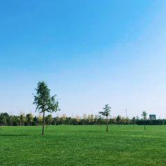牧城公園用戶圖片
