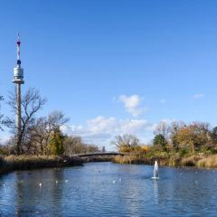 Donauturm User Photo