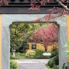 慧因高麗寺用戶圖片