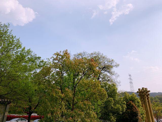 老山國家森林公園