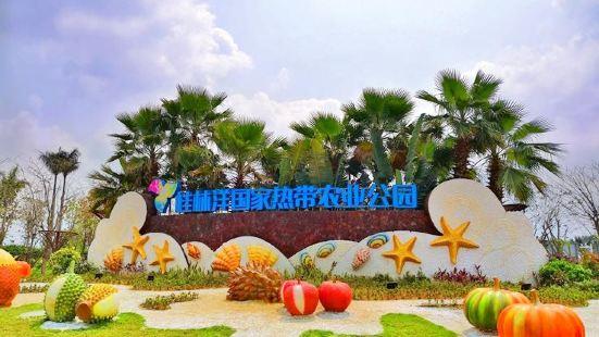 桂林洋國家熱帶農業公園