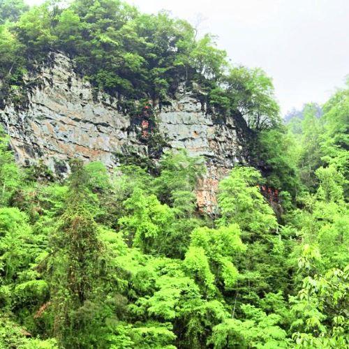 Wumachaotian Scenic Spot Management Office