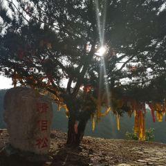 薊州車神架風景區用戶圖片