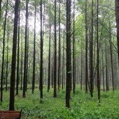 小格里自然風景區用戶圖片