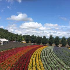 上野農場用戶圖片