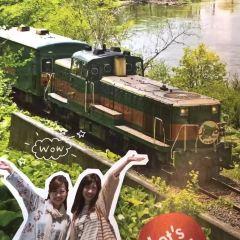 Kushiro Shitsugen Norokko Train User Photo