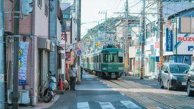 鎌倉運動活動