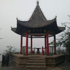 Wangguiting User Photo