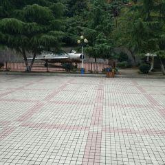 Renmin Park User Photo