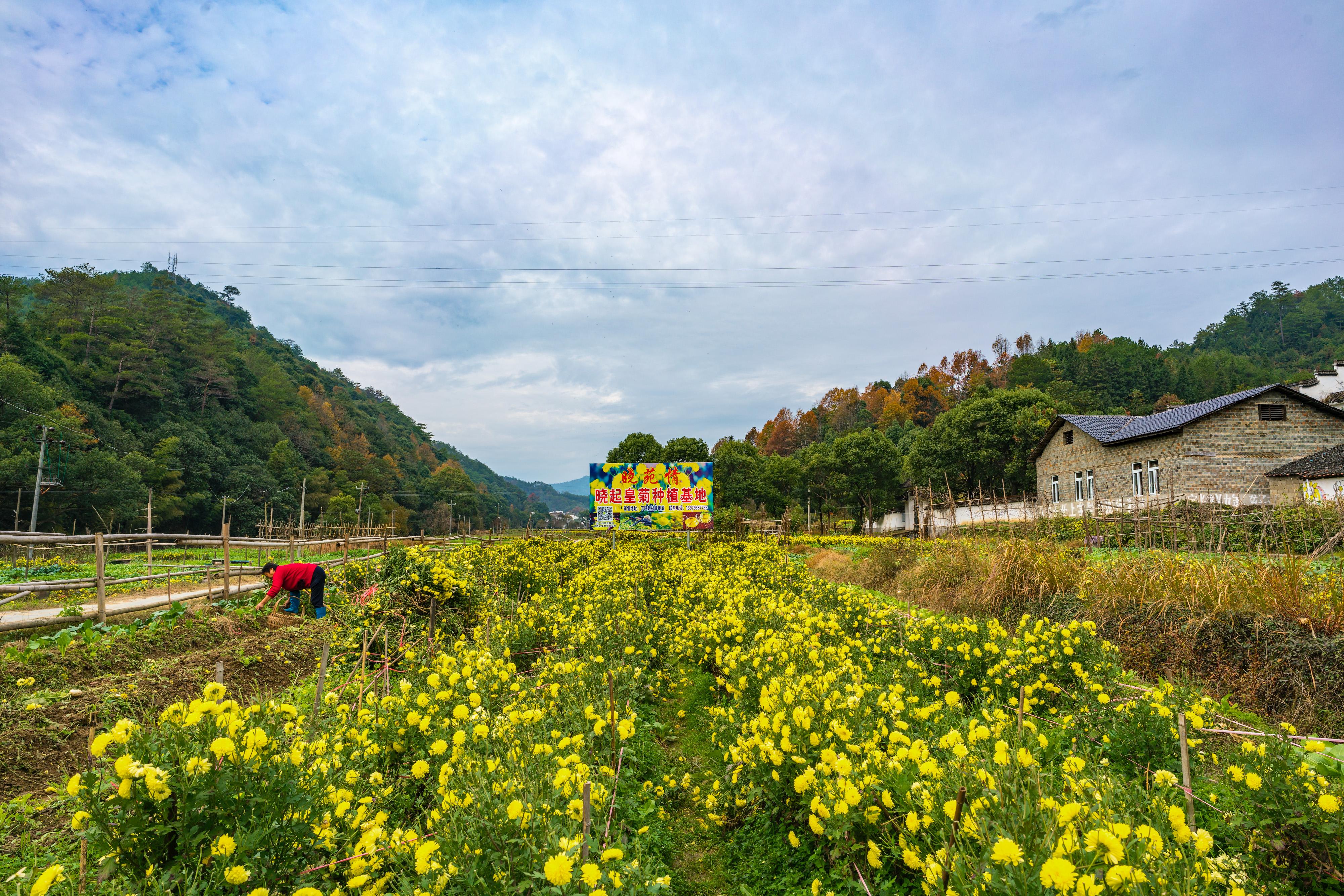 Shangxiaoqi