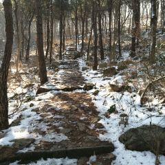 安山森林公園用戶圖片