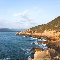 藤海灣用戶圖片