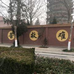 大海寺用戶圖片