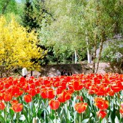 Xining Botanical Garden User Photo