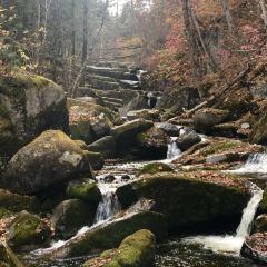 汪清蘭家大峽谷國家森林公園用戶圖片