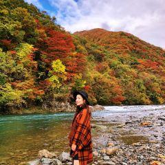 Dakigaeri keikoku User Photo