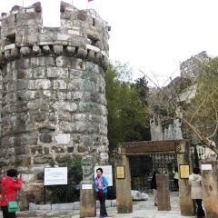 博德魯姆城堡用戶圖片