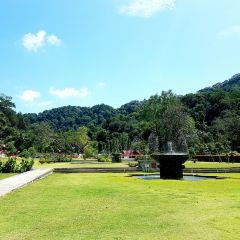 檳城植物園用戶圖片