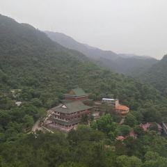 Zhenshan User Photo