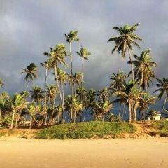 Flamengo Beach張用戶圖片