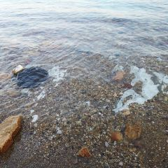死海用戶圖片