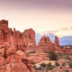 Seven Magic Mountains用戶圖片