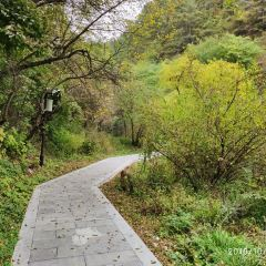 Shouyang Mountain Scenic Spot User Photo