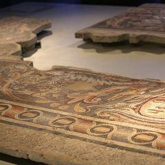 聖經與聖地博物館用戶圖片