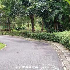 Boluodong Shan Shengji Forest Park User Photo