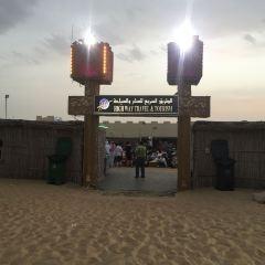 Al Maha, A Luxury Collection Desert Resort & Spa User Photo