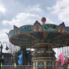 羅莊盛能遊樂園用戶圖片