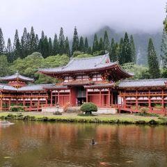 뵤도인 사원 여행 사진