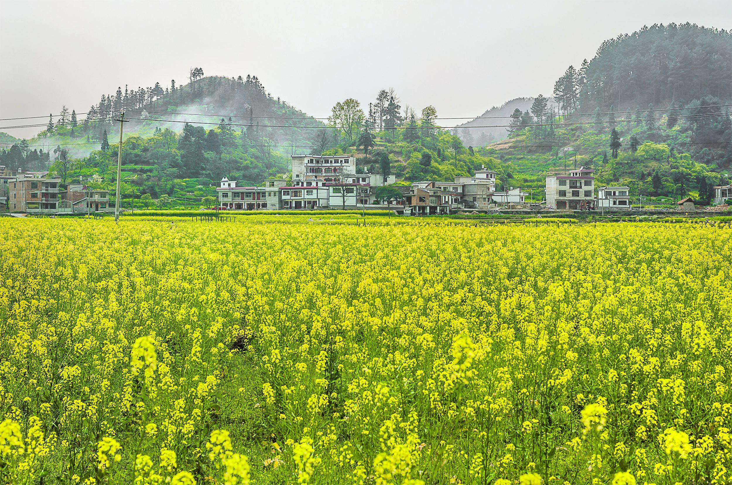 Jinhai Snow Mountain