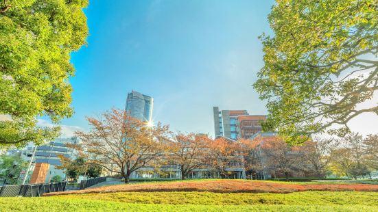 東京國立近代美術館國際電影中心
