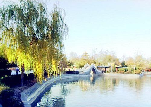 Heilongjiang Qingshan National Forest Park