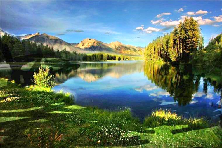 半月湖畔自然公園