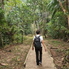 巴哥國家公園張用戶圖片