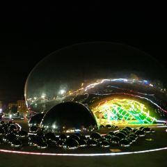 大油泡用戶圖片