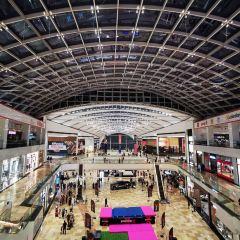 Novo Cinema Dubai Festival CIty Mall User Photo