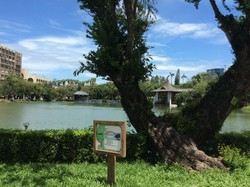 타이중공원